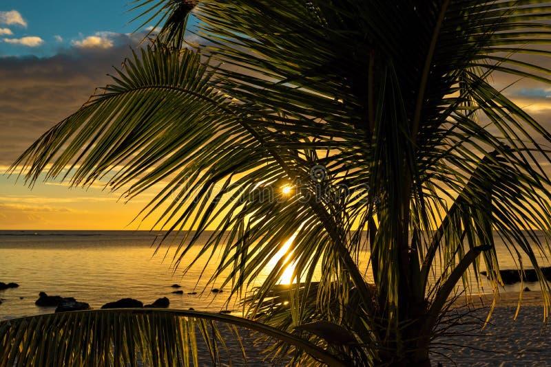 Заход солнца на пляже на острове Маврикия стоковое изображение rf