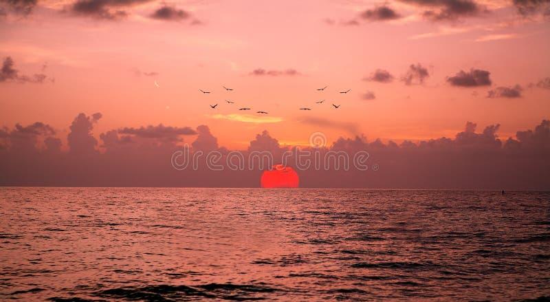 Заход солнца Неаполь, Флориды стоковое изображение rf