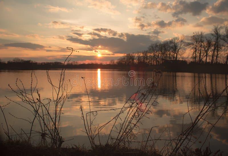 Заход солнца - озеро - отраженные облака, scrubs на береге стоковые изображения