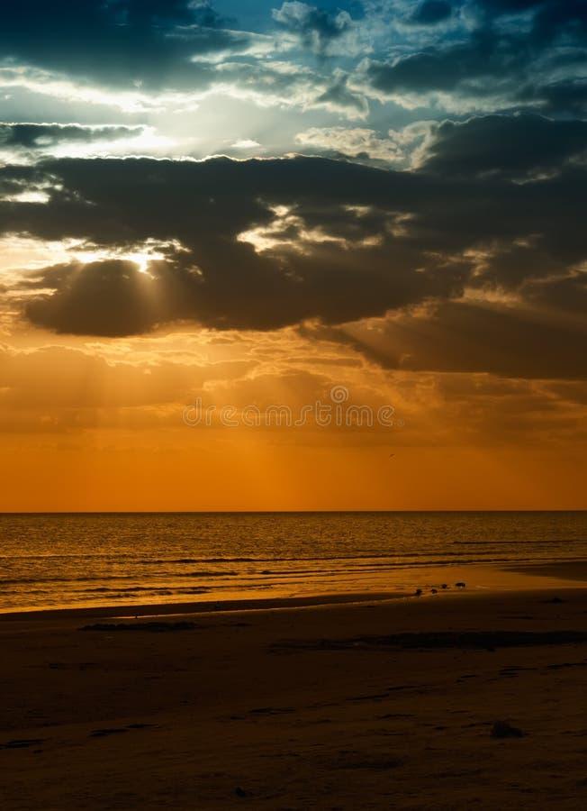 заход солнца острова медового месяца florida стоковые фото
