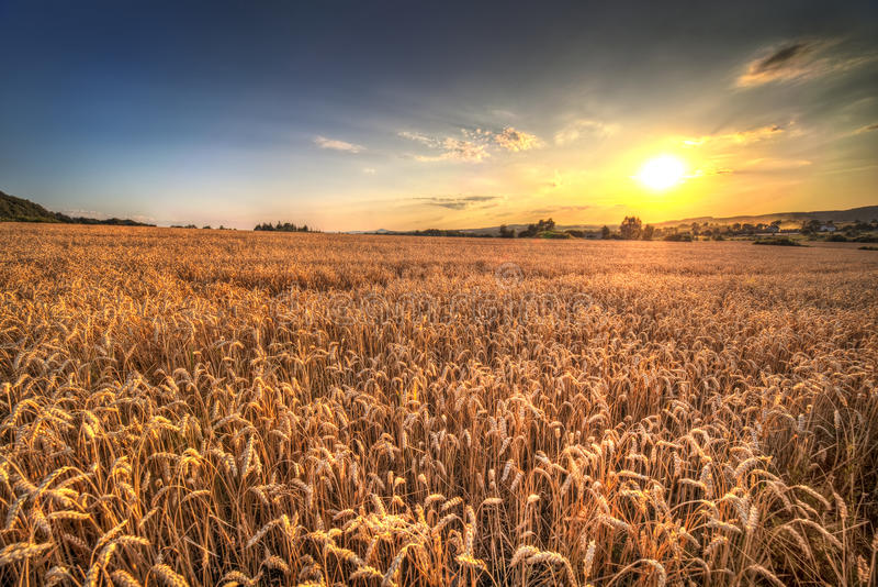 заход солнца Польши ландшафта стоковые фото
