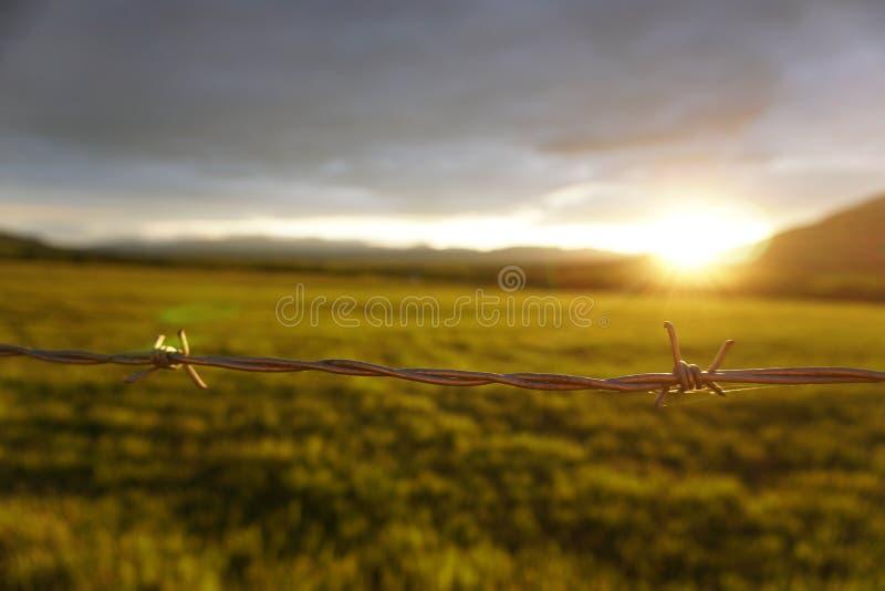 Заход солнца провода колючки стоковая фотография rf