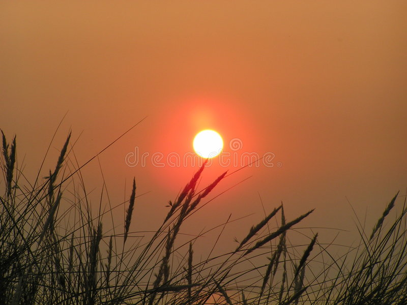 заход солнца Северного моря стоковые фотографии rf