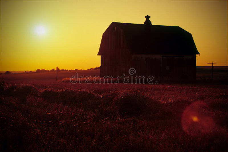 заход солнца сельскохозяйствення угодье стоковое фото