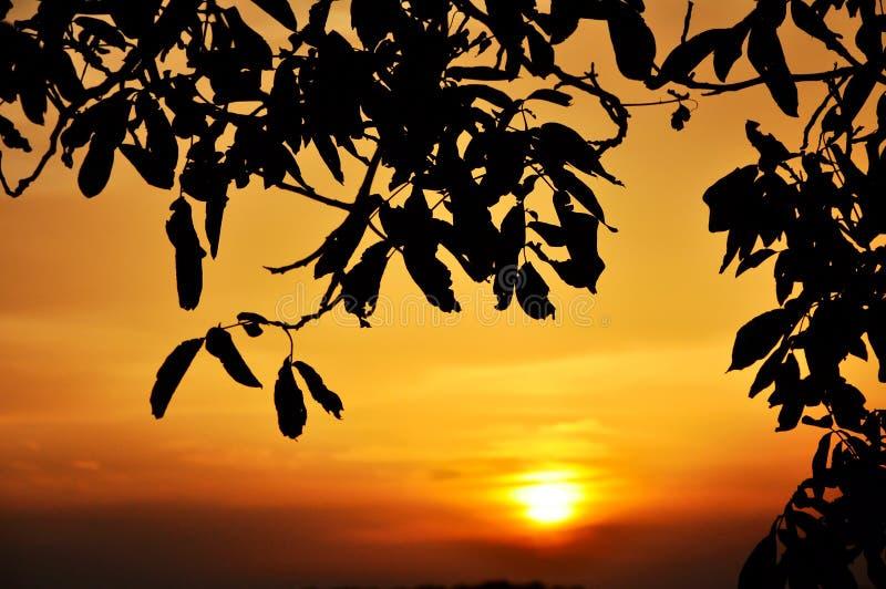 заход солнца солнца неба стоковые фото