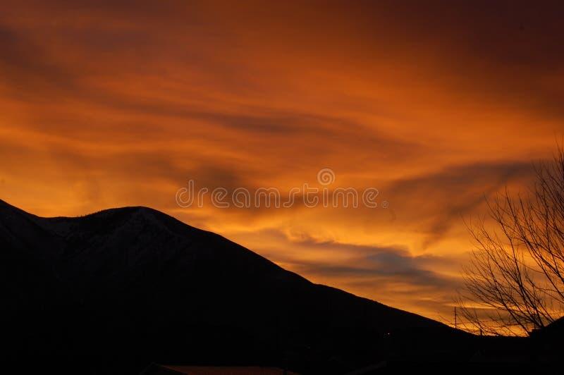 Заход солнца с силуэтом горы и дерева стоковые изображения rf