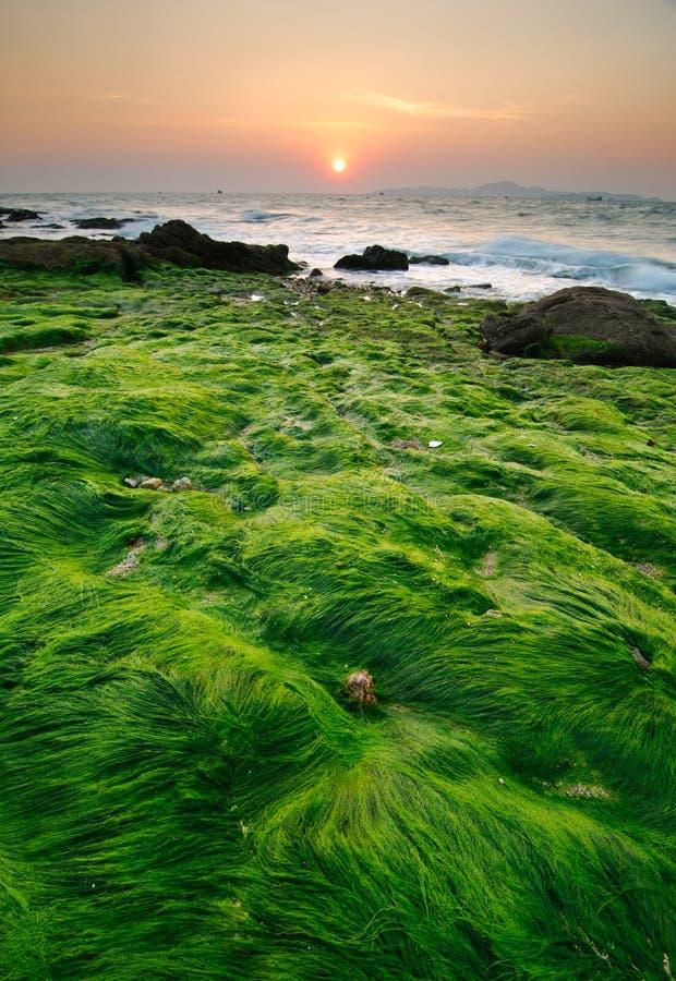 заход солнца Таиланд seascape pattaya пляжа стоковое фото rf