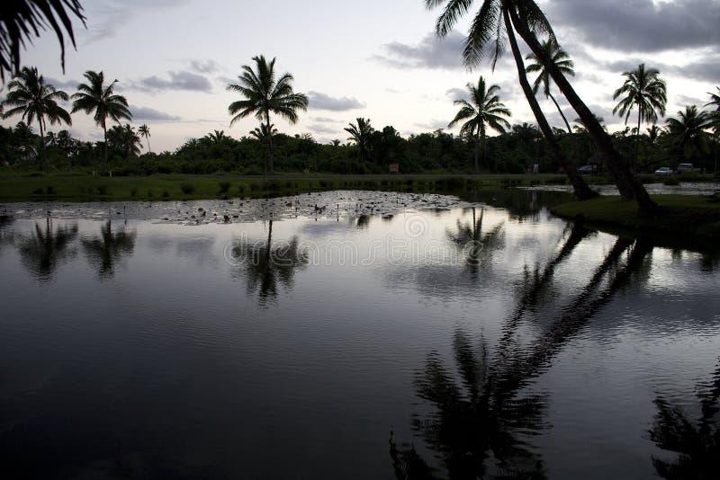 заход солнца Фиджи стоковое фото rf