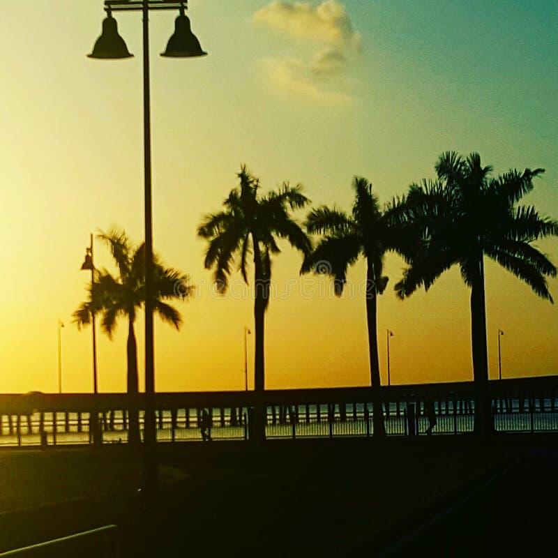 Заход солнца Флориды на побережье юго-запада стоковые фотографии rf
