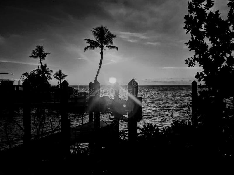 Заход солнца Флориды тропический стоковое фото