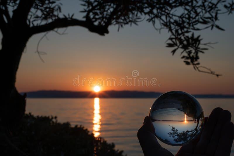 Заход солнца через ветви стеклянной сферы и оливкового дерева на пляже Cres стоковое изображение rf