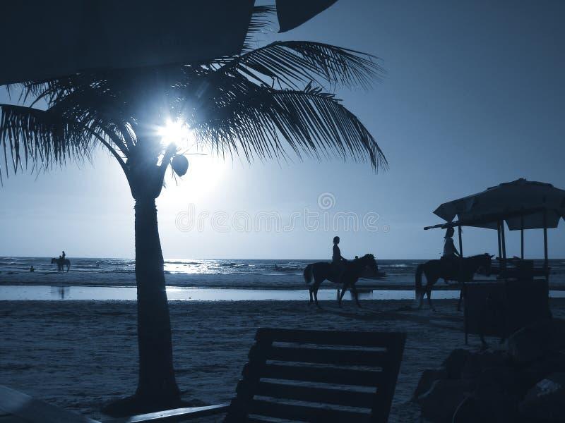 заход солнца 05 стоковое изображение