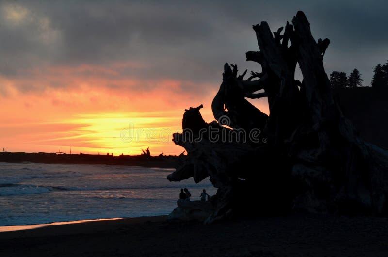 Заход солнца Lapush, Baby2! Hikers & силуэты Driftwood на пляже 1, LaPush, Вашингтон стоковое фото