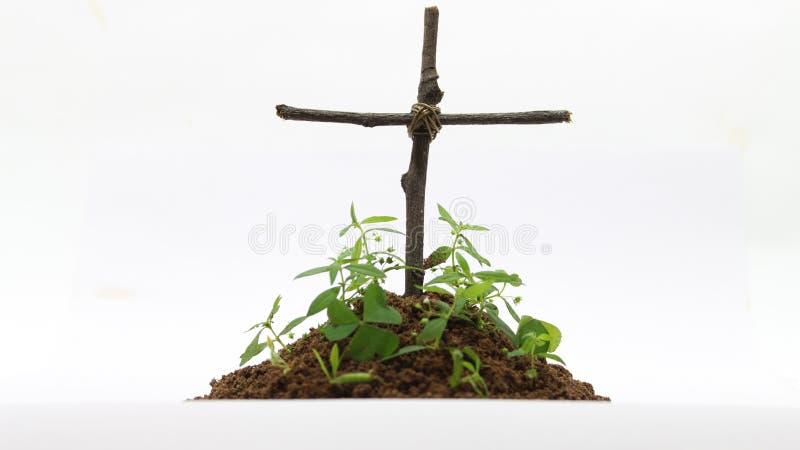 Захоронение с крестом в белой предпосылке стоковая фотография rf