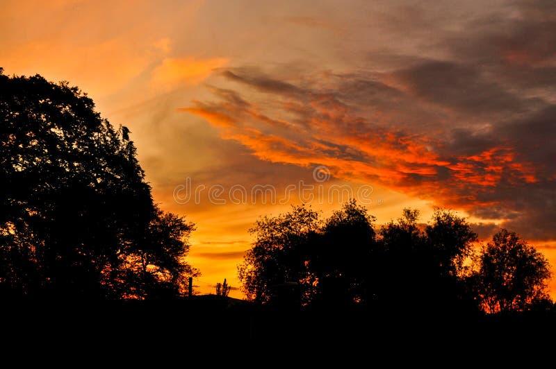 Заход солнца Белфаста стоковые фото