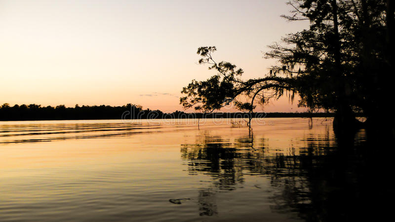 Заход солнца болота стоковое фото rf