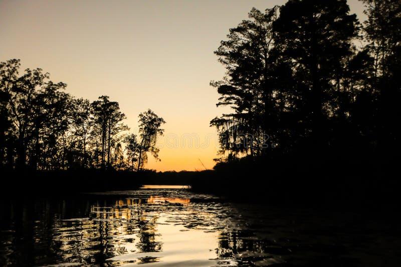 Заход солнца болота стоковое изображение rf