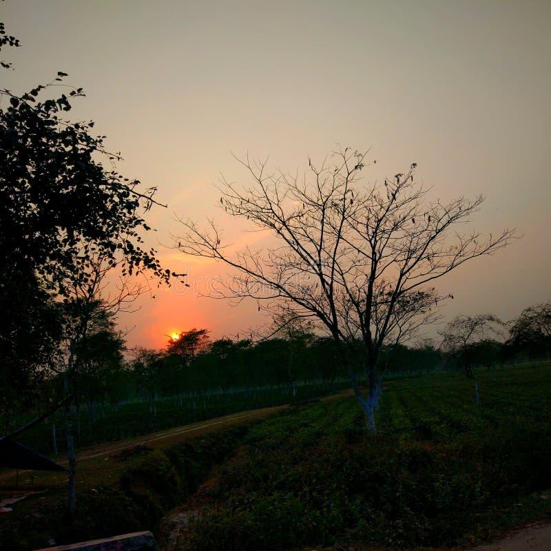 Заход солнца вечера стоковая фотография rf