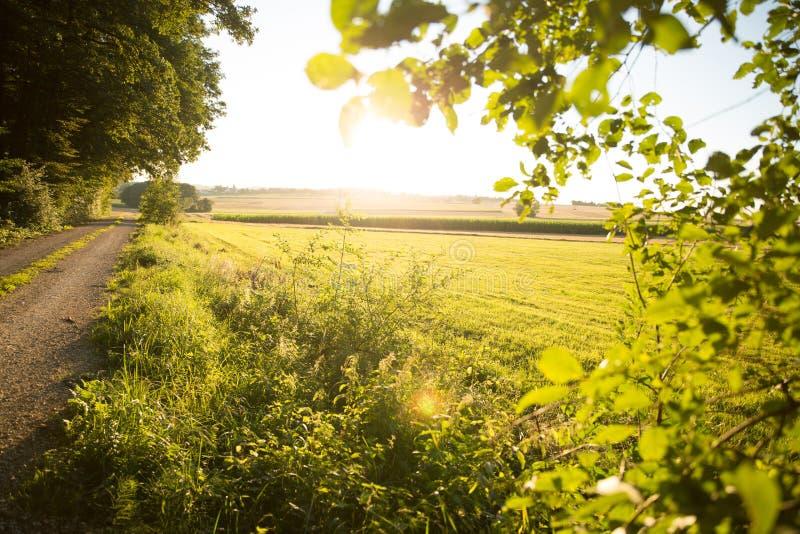 Download Заход солнца в Баварии стоковое изображение. изображение насчитывающей green - 40583533