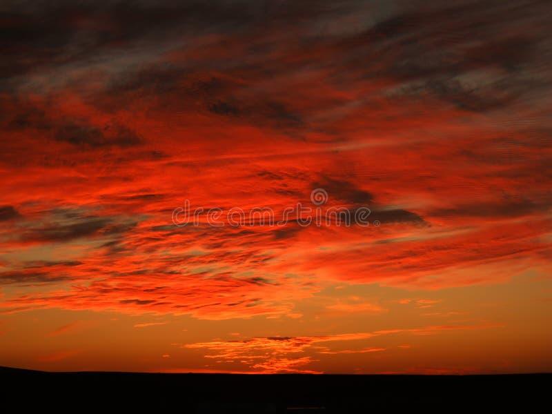 Заход солнца в пустыне стоковые фотографии rf