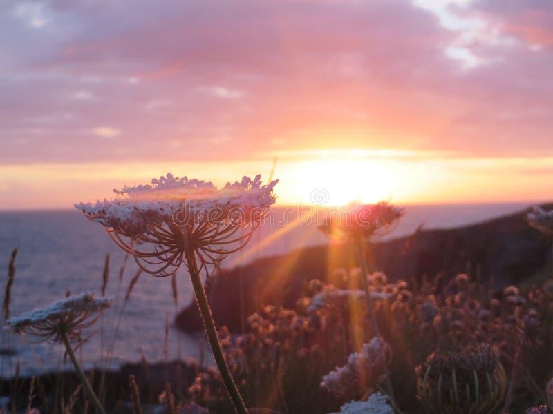 Заход солнца в Уэльсе стоковое изображение rf