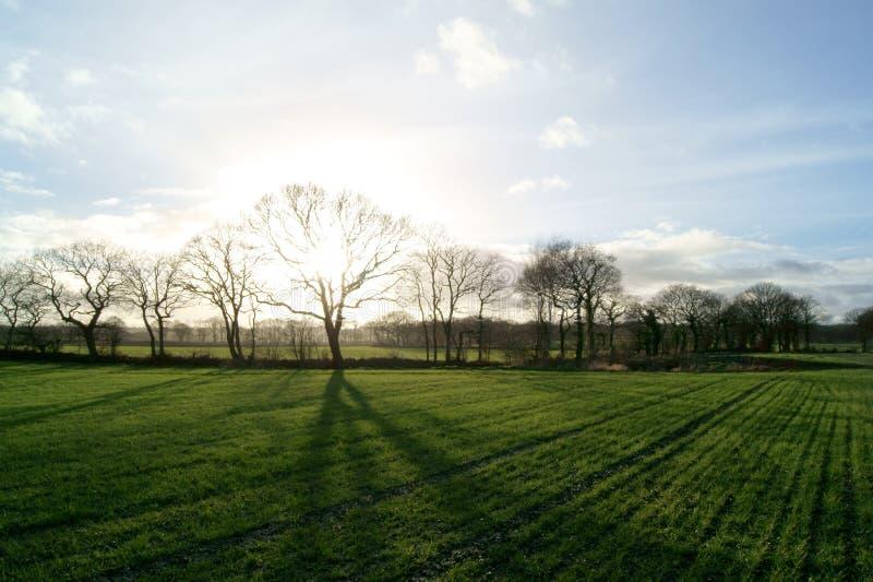 Заход солнца в gathurst стоковое изображение rf