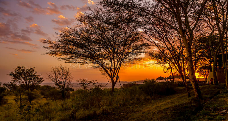 Заход солнца в Serengeti стоковые изображения