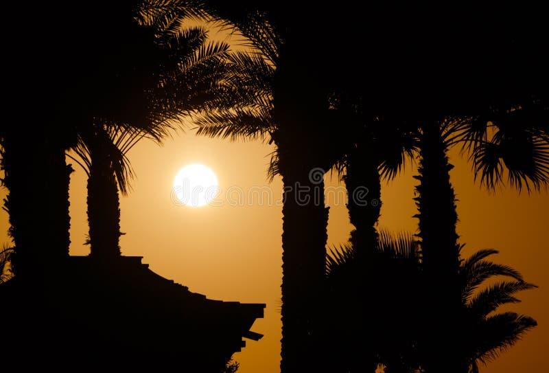 заход солнца Дубай стоковое фото