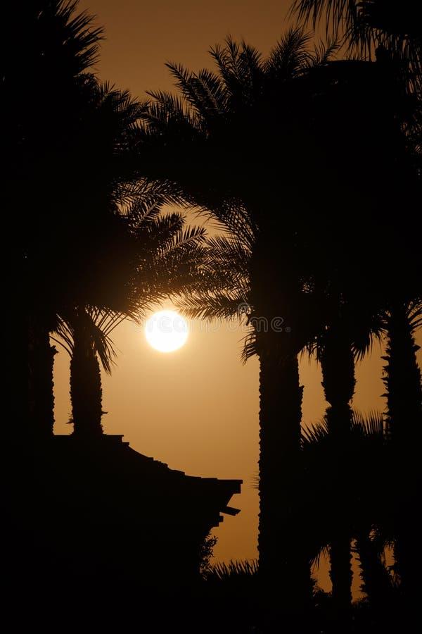 Заход солнца за пальмами и домом стоковая фотография