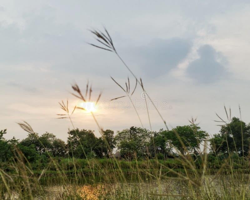 Заход солнца и небо стоковая фотография rf