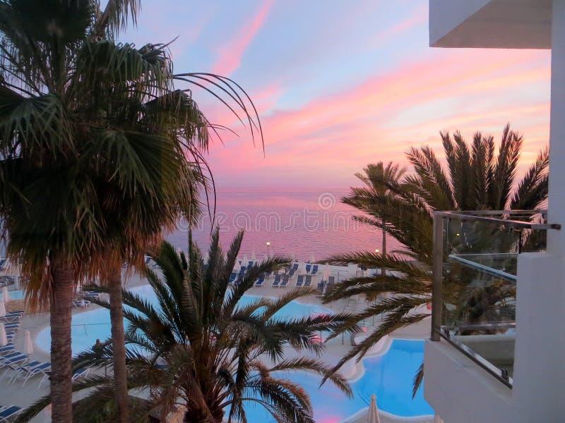 Заход солнца и пальмы, Gran Canaria стоковое изображение