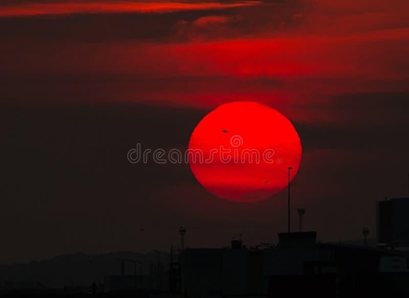 Заход солнца и силуэты стоковое фото