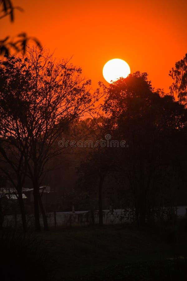 Заход солнца красивого неба пламенистый оранжевый стоковые фотографии rf