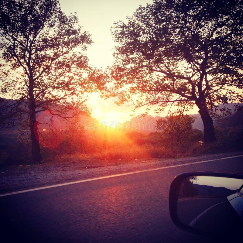 Заход солнца между деревьями стоковая фотография rf