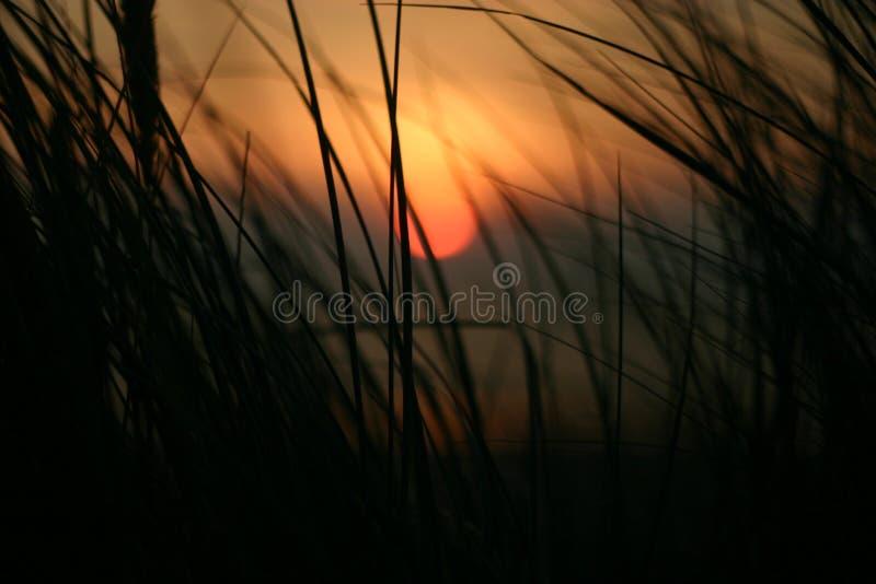 Заход солнца морем стоковое изображение