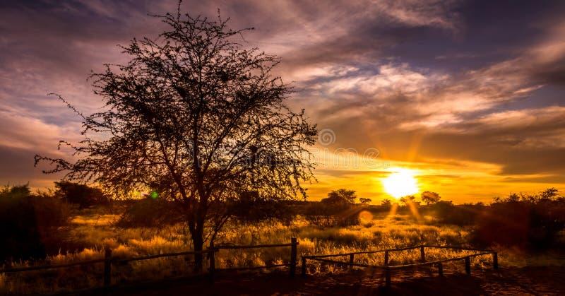 Заход солнца над Африкой стоковое фото rf