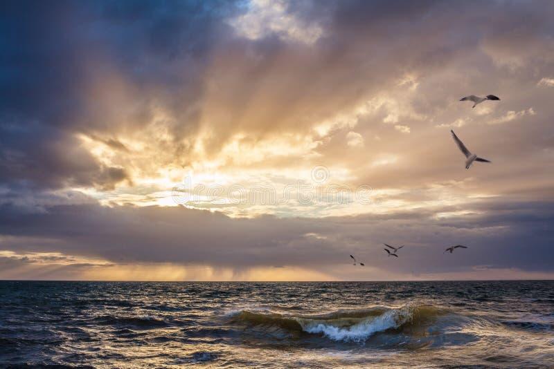 Заход солнца над водой с перебиваними работами волны передний план стоковые фотографии rf