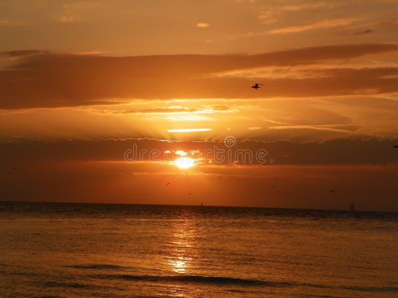 Заход солнца-над-залив стоковые изображения rf