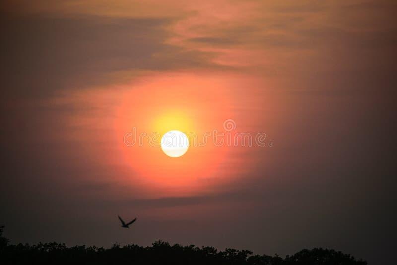 Заход солнца на озере в лете стоковое фото