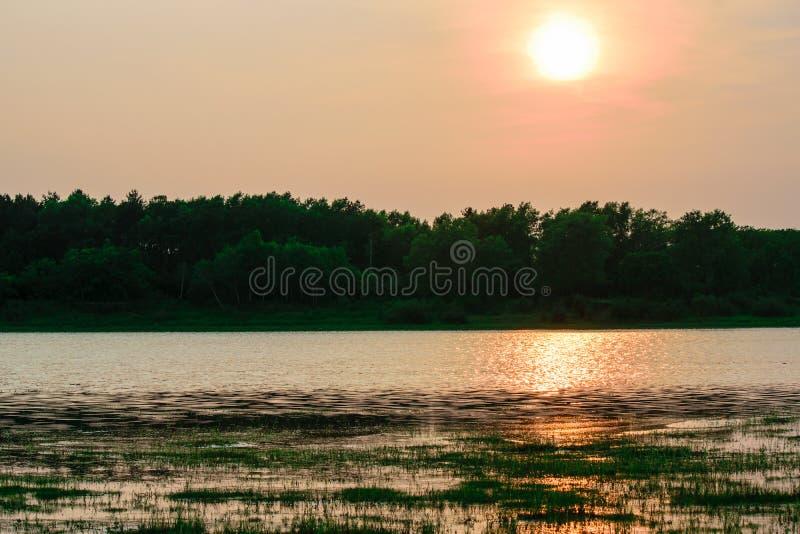 Заход солнца на озере в лете стоковое фото rf