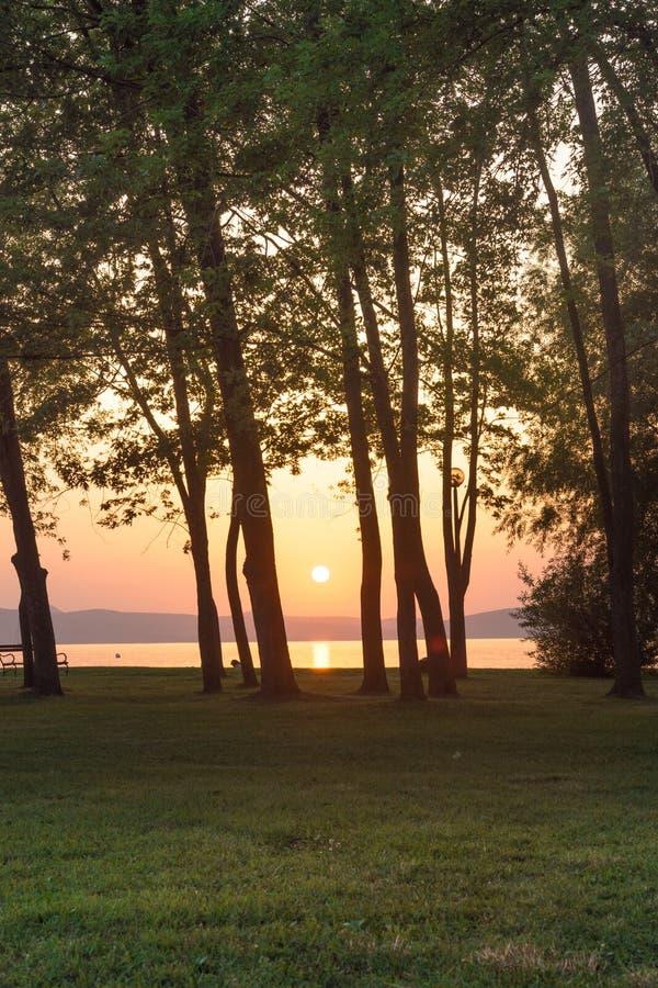 Заход солнца на озере Balaton посмотрел через деревья стоковые фото