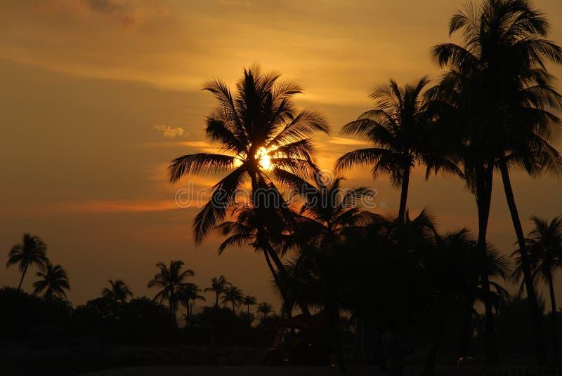 Заход солнца на пляже Сингапура стоковые фото