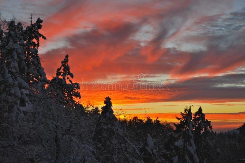 Заход солнца на снеге стоковое фото rf