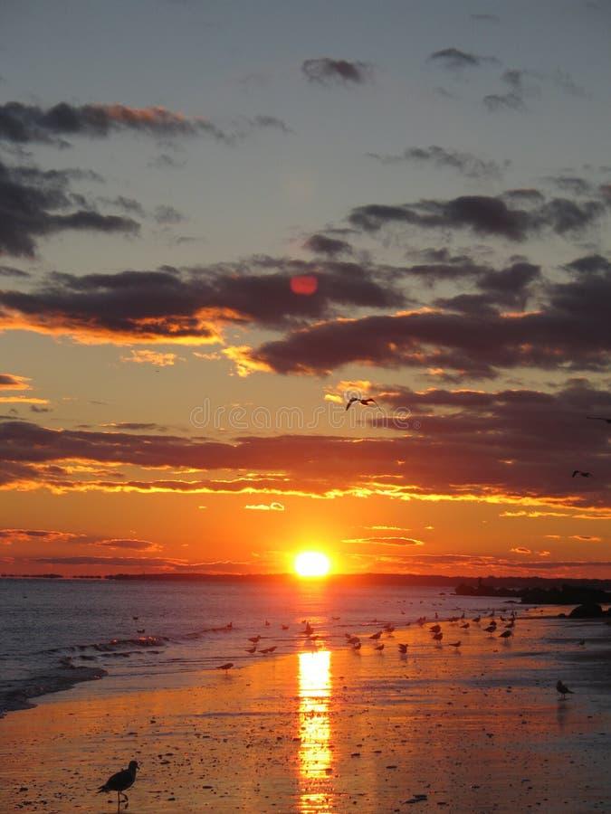 Download Заход солнца на Sunken пляже луга Стоковое Фото - изображение насчитывающей океан, померанцово: 41653372