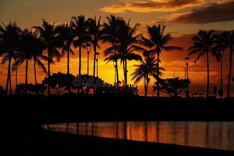 Заход солнца от пляжа Waikiki, Гонолулу, Оаху, Гаваи стоковые изображения rf