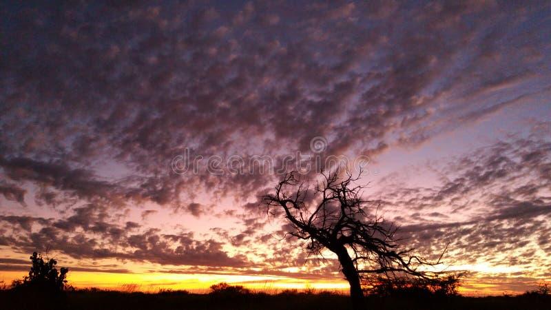 Заход солнца покрашенный радугой стоковые фото