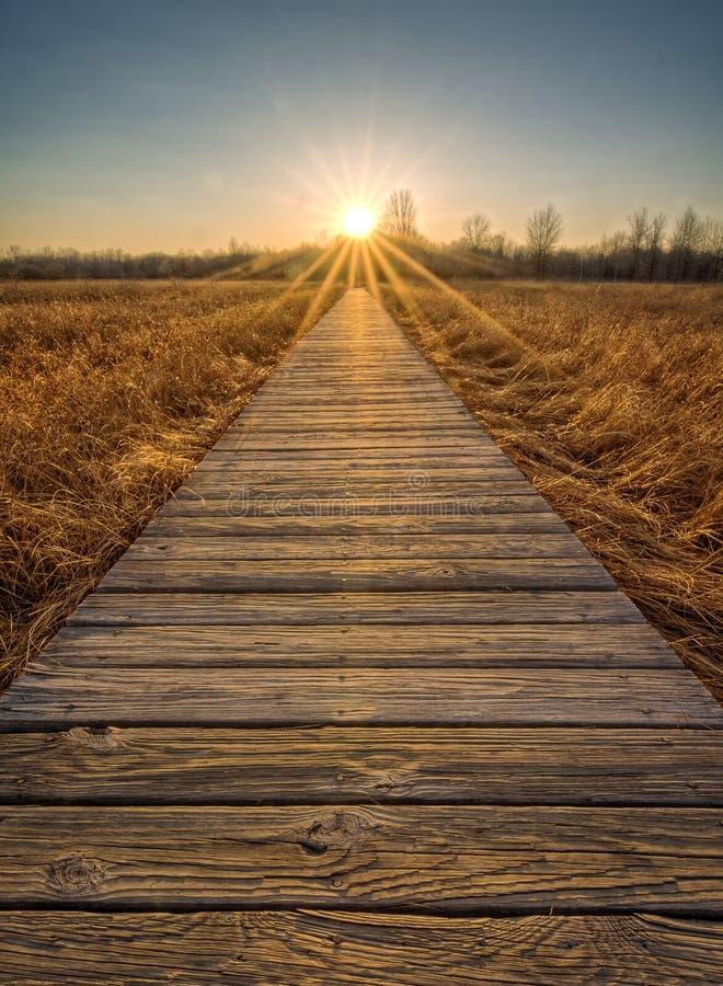 Заход солнца променада прерии стоковая фотография rf
