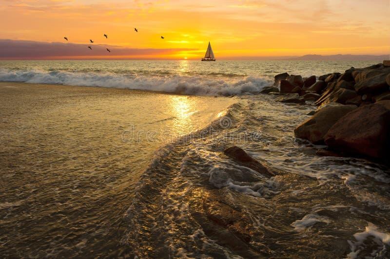 Заход солнца плавания стоковое фото rf