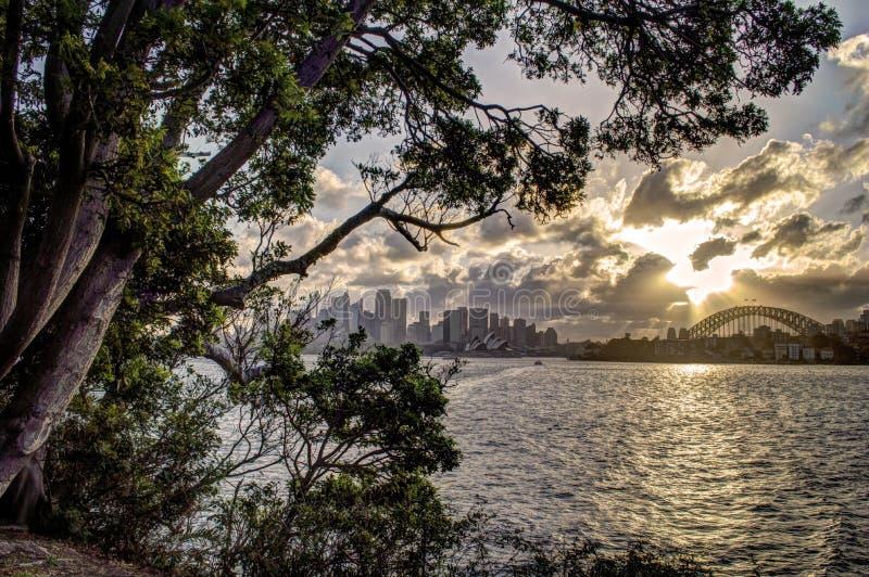 Заход солнца Сидней стоковое фото rf