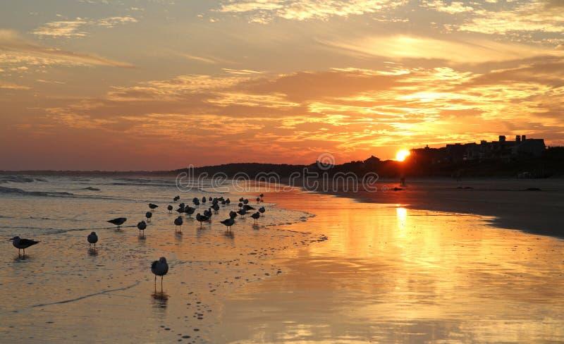 Заход солнца с облаками и океаном стоковая фотография